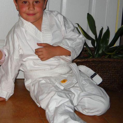 Karateka (1)