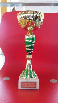 Copa de Campeón Trofeo Primavera por Equipos Mixto 2017