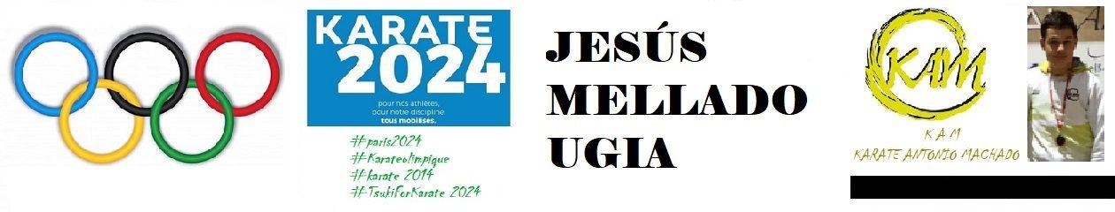 Jesús Mellado Ugia